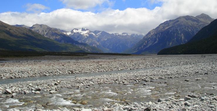 NZ 2008 025