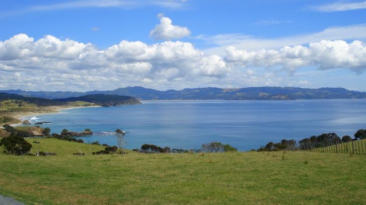 NZ 2008 240