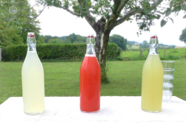 Limonadas variadas, receta de limonada, limonada sin azúcar, limonada de jengibre, limonada de lima y menta, limonada de frambuesa, bebidas sin azúcar, receta de limonada