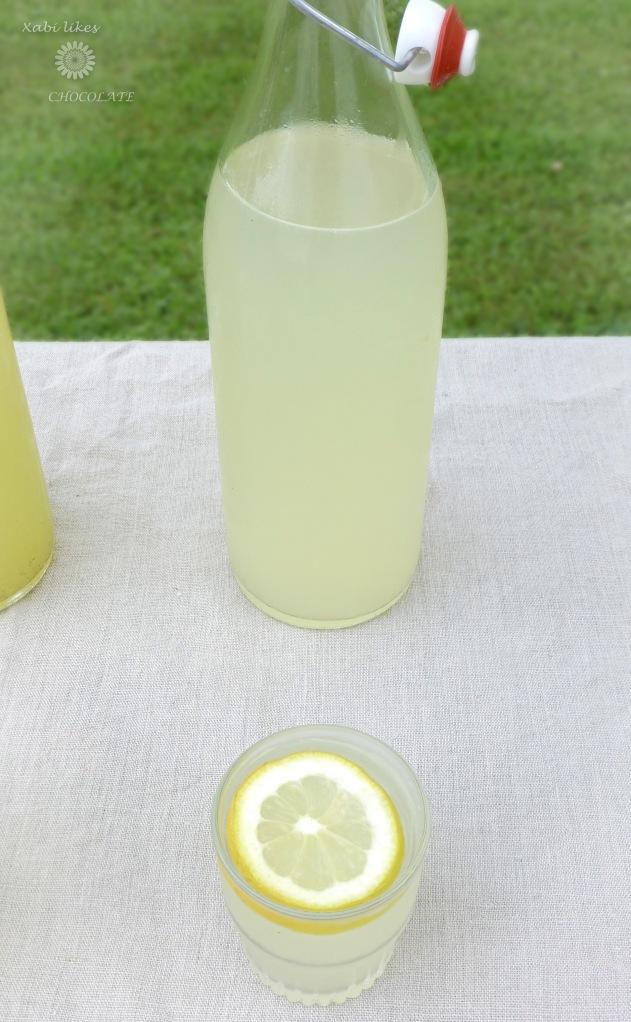Limonada de jengibre, limonada sin azúcar, limonada de lima y menta, limonada de frambuesa, bebidas sin azúcar, receta de limonada
