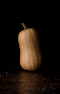 Butternut Squash Photography