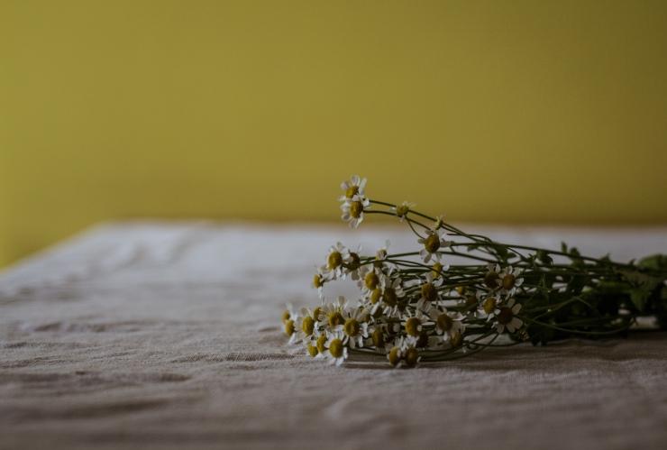 tiramisu individual, cocina saludable, como-hacer-tiramisu, nigella-lawson-tiramisu, nigella-tiramisini, receta-tiramisu, tiramisu-casero, tiramisu-facil, tiramisu-nigella
